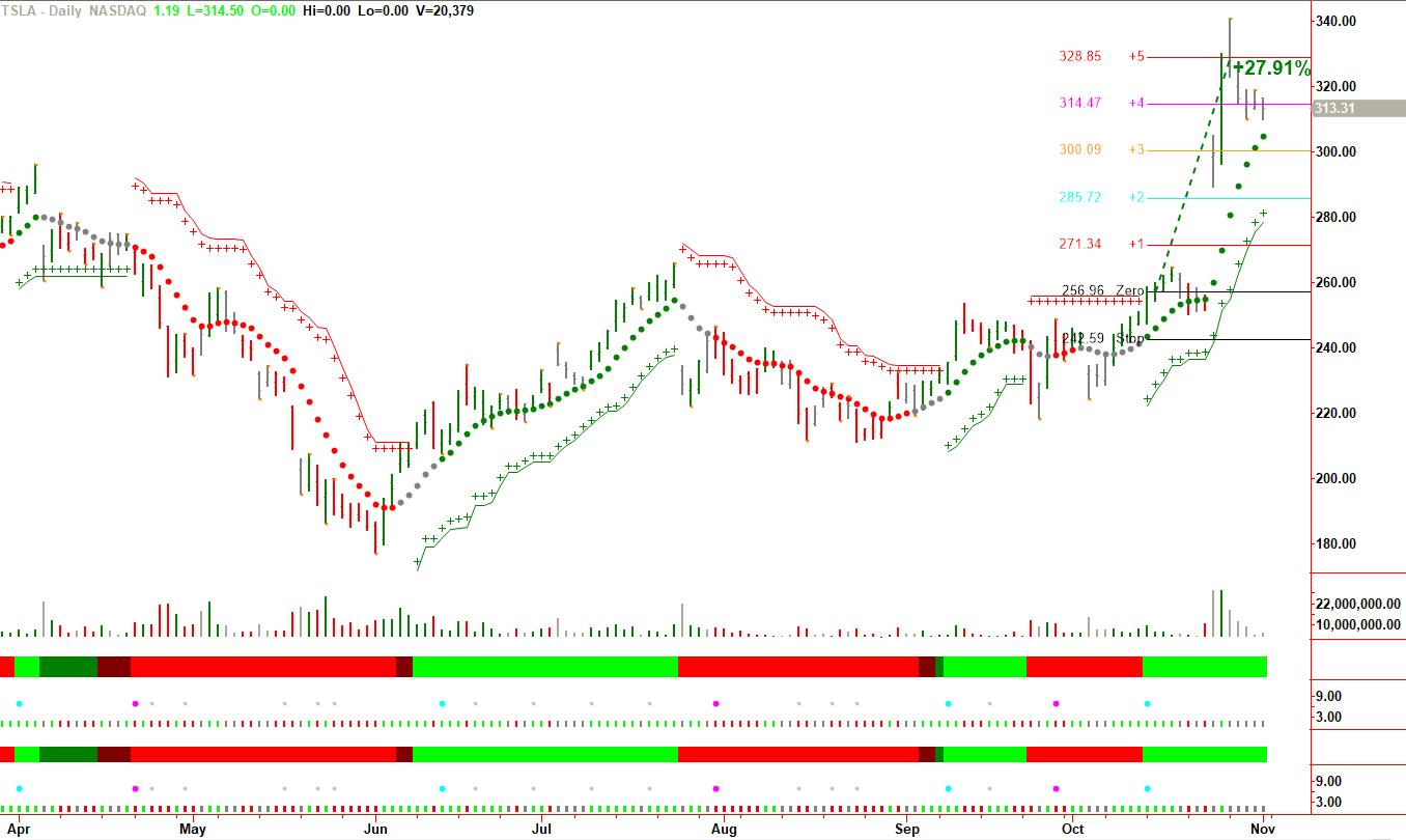 nice 30% gain in $TSLA